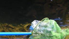 Lago plástico vazio da garrafa ninguém metragem do hd filme