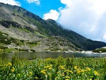 Lago Pleso nad Skokom, alte montagne di Tatras, Slovacchia Immagine Stock