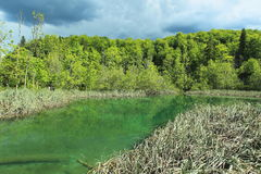 Lago Plitvice Fotografia Stock