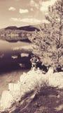 Lago Poinsett Fotografie Stock