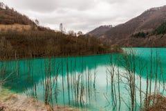 Lago pollution Fotografía de archivo