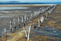 Lago Pomorie Fotografie Stock
