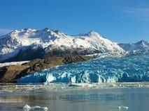 Lago Popielaty w Torres Del Paine Obrazy Royalty Free
