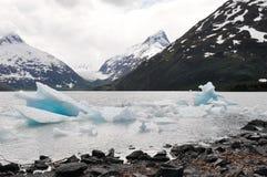Lago Portage con l'iceberg, Alaska fotografie stock