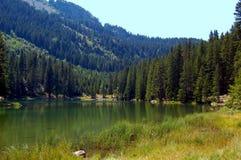 Lago Poursollet nos alpes franceses Fotografia de Stock Royalty Free