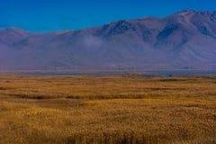 Lago Prespa em Grécia um o dia nevoento foto de stock royalty free