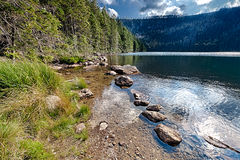 Lago preto glacial cercado pela floresta Fotos de Stock
