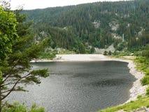 Lago preto na passagem de Louchbach nos Vosges Imagem de Stock
