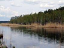 Lago in primavera Fotografie Stock