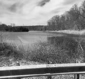 Lago privado preto e branco, ilha privada Imagem de Stock Royalty Free