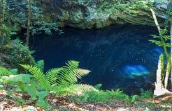 Lago profundo en la garganta rocosa fotografía de archivo