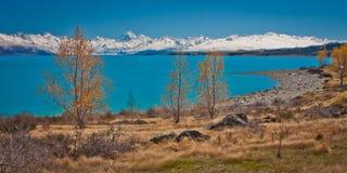 Lago Pukaki con il cuoco di Mt Cuoco nel fondo, Nuova Zelanda Fotografia Stock