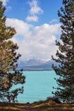 Lago Pukaki in Nuova Zelanda Fotografia Stock Libera da Diritti