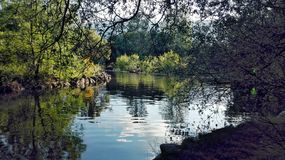 Lago puro Foto de archivo libre de regalías