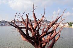 Lago Pushkar Foto de Stock Royalty Free