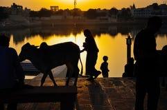 Lago Pushkar em Pushkar, Índia Foto de Stock Royalty Free