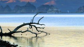 Lago pyramid fotografía de archivo