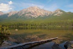 Lago pyramid y árbol muerto Fotografía de archivo libre de regalías