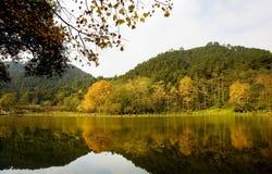 Lago Qianing en otoño Fotos de archivo