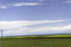 Lago Qinghai fotografía de archivo
