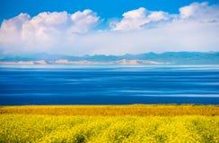 Lago Qinghai Fotos de Stock