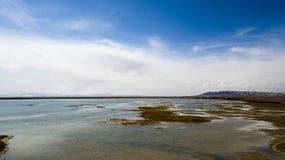 Lago Qinghai Fotos de archivo libres de regalías