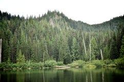 Lago quemado en un día nublado Fotos de archivo