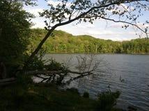 Lago Radnor fotos de stock