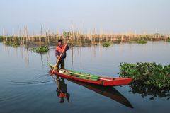 Lago Rawapening Imagem de Stock Royalty Free