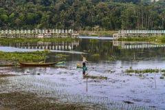 Lago Rawapening Fotos de Stock