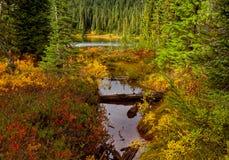 Lago reflection fotos de archivo