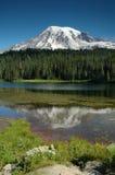 Lago reflection al supporto più piovoso, Stato del Washington Immagini Stock Libere da Diritti
