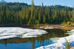 Lago reflection al supporto Rainier National Park fotografia stock