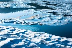 Lago reflection al supporto Rainier National Park immagine stock libera da diritti