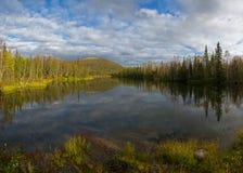 Lago reflection con la foresta immagine stock libera da diritti