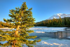 Lago reflection ed il monte Rainier congelati ad alba, supporto Rainier National Park fotografia stock
