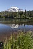 Lago reflection, sosta nazionale più piovosa di Mt., Washin immagini stock libere da diritti