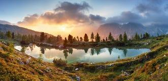 Lago, reflexão da árvore na água foto de stock