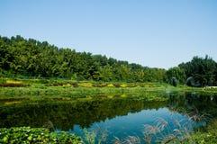 Lago reservado bajo el cielo azul Imagen de archivo