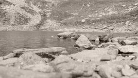 Lago reservado, Iezer en Arges, Rumania almacen de metraje de vídeo