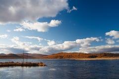 Lago rhododendron di Arxan fotografia stock libera da diritti