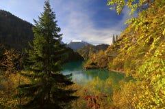 Lago Ritza - Abjasia Foto de archivo libre de regalías