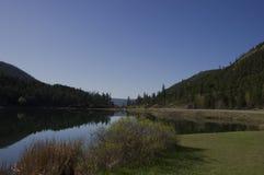 Lago roadside Fotografia Stock
