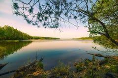 Lago rodeado por el marco del bosque confinado por la rama del pino Imagenes de archivo