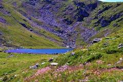 Lago Rodella, sud el Tyrol Italia imagen de archivo