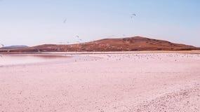 Lago rosa Fotografie Stock