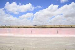 Lago rosado Fotos de archivo libres de regalías