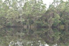 Lago Rosebery Foto de Stock Royalty Free