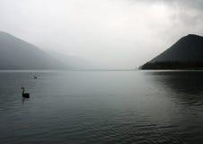 Lago Rotoiti Fotografia Stock Libera da Diritti