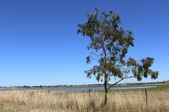Lago rural australiano Colac da paisagem fotografia de stock royalty free